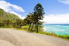 夏威夷ohau pali和海滩视图 库存图片
