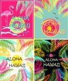 夏季的时尚T恤杉打印变异机智喂夏威夷字法、棕榈叶、太阳、海鸥、木槿和桃红色火鸟 平的d 免版税库存图片