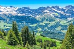 夏季的瑞士阿尔卑斯 美丽如画的登上的全景 免版税库存图片