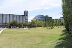 夏日远足在城市公园 库存图片