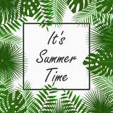 夏时与-热带棕榈叶、密林叶子、异乎寻常的植物和边界框架的卡片设计 海报的,横幅图表 免版税库存图片