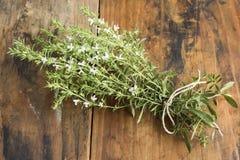 夏重薄荷,开胃的菜肴Hortensis,束 免版税图库摄影