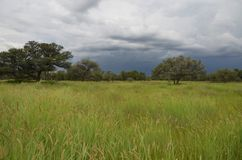 夏令时在纳米比亚 免版税库存照片
