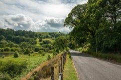 夏令时沿一条乡下公路的森林和山风景在威尔士的活力谷 免版税库存图片