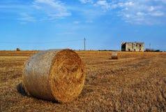 夏令时的干草领域 免版税库存照片