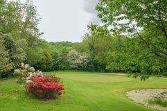夏令时风景在英国乡下 库存图片