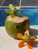 夏令时beachparty海滩乐趣cocosnut水池 图库摄影