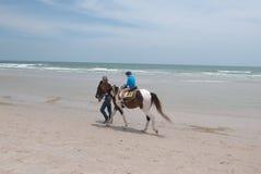 外国` s孩子乘驾一匹马在华欣 免版税图库摄影