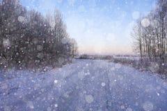 2外壳稀薄强调冻结湖自然模式雪阳光表面纹理 库存图片
