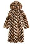 外套自然毛皮的豪华 免版税库存照片