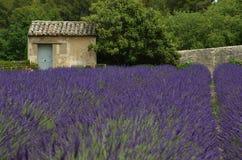 外屋在凡高的收容所在圣雷米,法国 库存图片