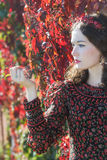 外形观点的秋天花圈的秋天女孩与葡萄忍冬属植物束 库存图片