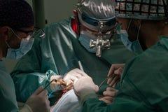 外科医生在工作 免版税库存照片