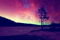 外籍人冬天风景 免版税库存图片