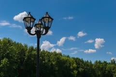 外部与节能CCFL电灯泡的街道岗位灯具 绿色树在背景中 图库摄影