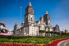 外部大城市大教堂在墨西哥城 免版税库存照片