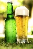 外面啤酒瓶玻璃草 库存图片