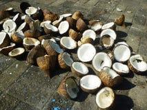 外面干椰肉太阳干燥 库存照片