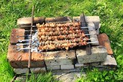 外面开胃shashlik 烹调猪肉 烤肉午餐 库存照片
