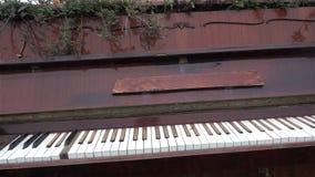 外面老钢琴 古色古香的乐器 历史记录 博物馆,艺术HD 股票录像