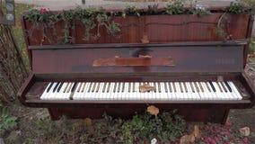 外面老钢琴 古色古香的乐器 历史记录 博物馆,艺术HD 股票视频