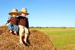 外面逗人喜爱的兄弟在农场 库存照片