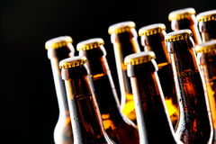 多个冷的未打开的啤酒瓶 库存照片