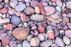 多个小海岩石 免版税库存照片