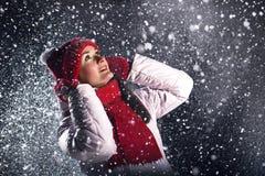 多么美丽雪落 库存图片