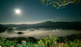 多云和Fox夜间 库存图片