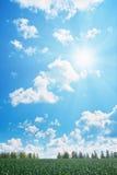 多云域天空星期日 库存照片