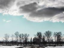 多云天天空覆盖蓝色圣诞树桦树水平路的背景树村庄雪熔化的小条  免版税库存照片