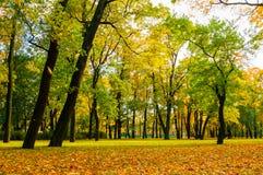 多云天气的-五颜六色的秋天风景秋天公园 图库摄影