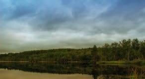 多云天气的Forest湖 库存照片