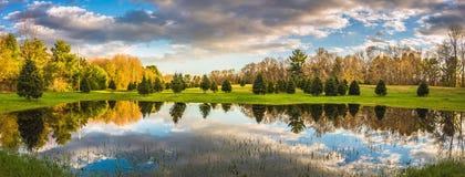 多云天空反射在哈德利附近镇的池塘  免版税库存图片