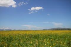 多云天空和村庄及早放牧backrounds冬天季节,平安的情况,旅行目的地,住宅区 库存照片