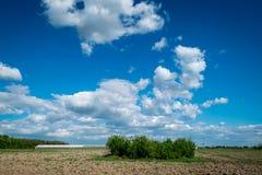多云天空在茫茫荒野 库存图片