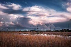 多云天空风景 在Kalkan边湖草甸的日落通过芦苇 免版税库存图片