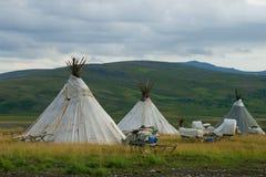 多云早晨,Khanty驯鹿交配动物者的解决 Yamal,俄罗斯 库存图片