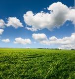 多云横向天空 免版税库存图片