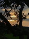 多云热带 免版税图库摄影