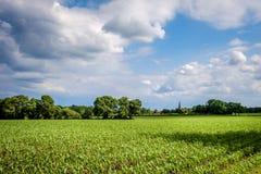 多云荷兰夏天风景在Delden Twente,上艾瑟尔省附近的6月 免版税库存照片