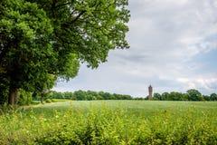 多云荷兰夏天风景在Delden Twente,上艾瑟尔省附近的6月 免版税图库摄影