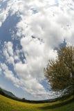 多云fisheye天空视图 库存图片