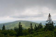 多云Mt. Greylock 免版税图库摄影