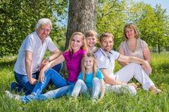 多代的家庭在公园 免版税库存图片