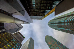 多伦多加拿大办公室密林 免版税库存照片