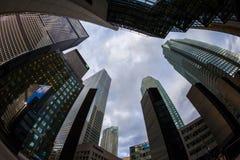多伦多加拿大办公室密林 库存照片