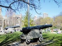 多伦多大学历史的大炮2010年 免版税图库摄影