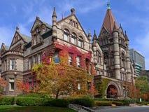多伦多大学 免版税图库摄影